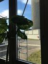 14.02.2019 Besuch im MZFR Mehrzweckforschungsreaktor im KIT Campus Nord #untitledarchive #radioaktivermuell #ehemaligeskernforschungszentrum_kit #seminar
