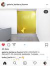 Eine Empfehlung für die galerie Barbara Thumm und dieses Projekt, online Ausstellungsversuche... im Foto wird alles möglich und leicht #covid19 #neueformate